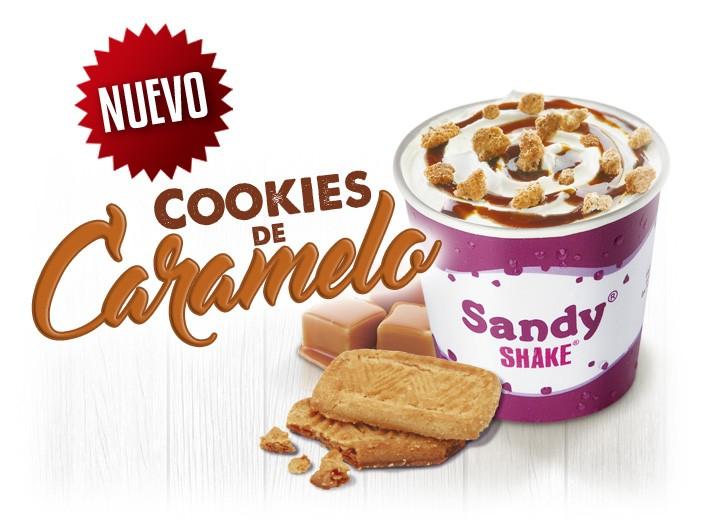 sandy-shake